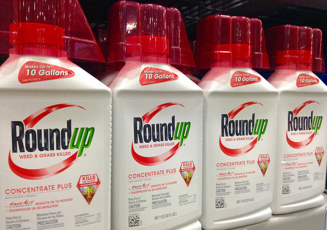 Roundup by Mike Mozart CC